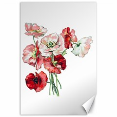 Flowers Poppies Poppy Vintage Canvas 20  X 30   by Celenk