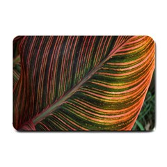 Leaf Colorful Nature Orange Season Small Doormat  by Celenk
