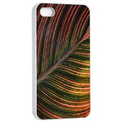 Leaf Colorful Nature Orange Season Apple Iphone 4/4s Seamless Case (white) by Celenk