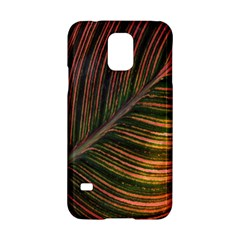 Leaf Colorful Nature Orange Season Samsung Galaxy S5 Hardshell Case  by Celenk