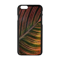 Leaf Colorful Nature Orange Season Apple Iphone 6/6s Black Enamel Case by Celenk