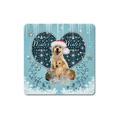 It s Winter And Christmas Time, Cute Kitten And Dogs Square Magnet by FantasyWorld7
