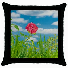 Beauty Nature Scene Photo Throw Pillow Case (black) by dflcprints