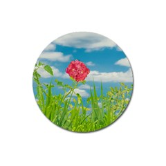 Beauty Nature Scene Photo Magnet 3  (round) by dflcprints