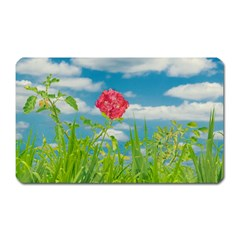 Beauty Nature Scene Photo Magnet (rectangular) by dflcprints