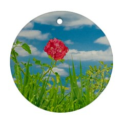 Beauty Nature Scene Photo Round Ornament (two Sides) by dflcprints