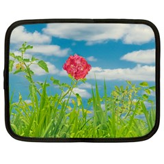 Beauty Nature Scene Photo Netbook Case (large) by dflcprints