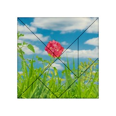 Beauty Nature Scene Photo Acrylic Tangram Puzzle (4  X 4 ) by dflcprints