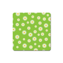 Daisy Flowers Floral Wallpaper Square Magnet by Celenk