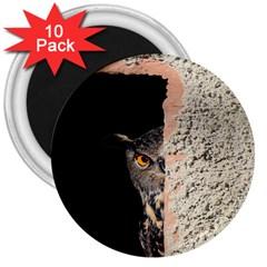 Owl Hiding Peeking Peeping Peek 3  Magnets (10 Pack)  by Celenk