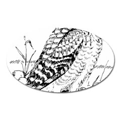 Animal Bird Forest Nature Owl Oval Magnet by Celenk
