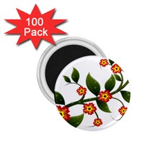 Flower Branch Nature Leaves Plant 1 75  Magnets (100 Pack)  by Celenk