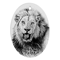 Lion Wildlife Art And Illustration Pencil Oval Ornament (two Sides) by Celenk