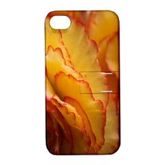 Flowers Leaves Leaf Floral Summer Apple Iphone 4/4s Hardshell Case With Stand by Celenk