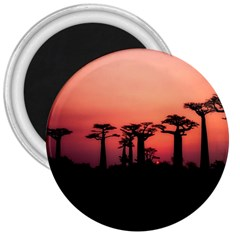 Baobabs Trees Silhouette Landscape 3  Magnets