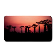 Baobabs Trees Silhouette Landscape Medium Bar Mats