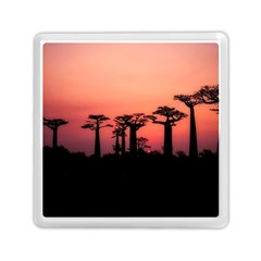 Baobabs Trees Silhouette Landscape Memory Card Reader (square)