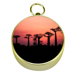 Baobabs Trees Silhouette Landscape Gold Compasses by BangZart