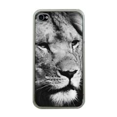 Africa Lion Male Closeup Macro Apple Iphone 4 Case (clear)