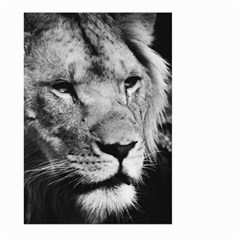Africa Lion Male Closeup Macro Large Garden Flag (two Sides) by BangZart