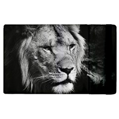 Africa Lion Male Closeup Macro Apple Ipad 3/4 Flip Case