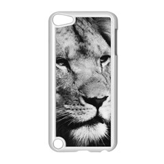 Africa Lion Male Closeup Macro Apple Ipod Touch 5 Case (white)