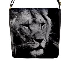 Africa Lion Male Closeup Macro Flap Messenger Bag (l)