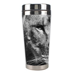 Africa Lion Male Closeup Macro Stainless Steel Travel Tumblers