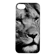 Africa Lion Male Closeup Macro Apple Iphone 5s/ Se Hardshell Case
