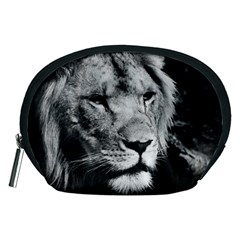 Africa Lion Male Closeup Macro Accessory Pouches (medium)