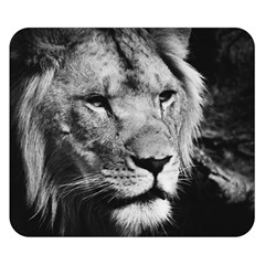 Africa Lion Male Closeup Macro Double Sided Flano Blanket (small)