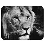 Africa Lion Male Closeup Macro Double Sided Flano Blanket (Medium)  60 x50 Blanket Front