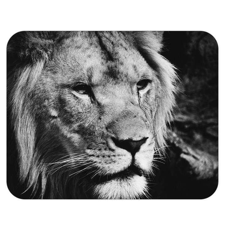 Africa Lion Male Closeup Macro Double Sided Flano Blanket (Medium)