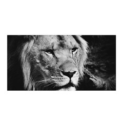 Africa Lion Male Closeup Macro Satin Wrap by BangZart