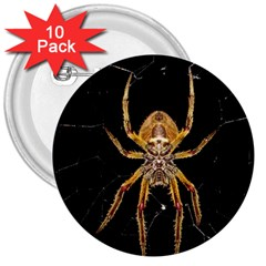 Insect Macro Spider Colombia 3  Buttons (10 Pack)  by BangZart
