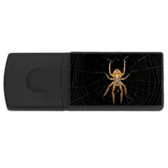 Insect Macro Spider Colombia Rectangular Usb Flash Drive