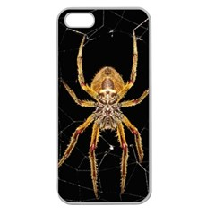 Insect Macro Spider Colombia Apple Seamless Iphone 5 Case (clear) by BangZart
