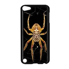 Insect Macro Spider Colombia Apple Ipod Touch 5 Case (black)