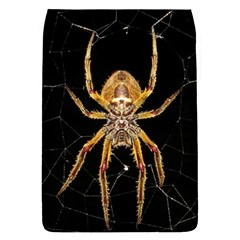 Insect Macro Spider Colombia Flap Covers (s)