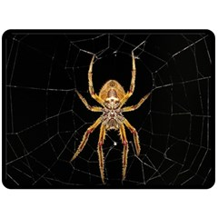 Insect Macro Spider Colombia Double Sided Fleece Blanket (large)