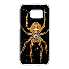 Insect Macro Spider Colombia Samsung Galaxy S7 Edge White Seamless Case