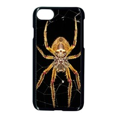 Insect Macro Spider Colombia Apple Iphone 8 Seamless Case (black) by BangZart