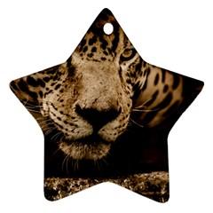 Jaguar Water Stalking Eyes Ornament (star)