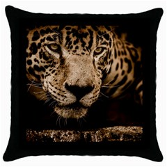 Jaguar Water Stalking Eyes Throw Pillow Case (black)