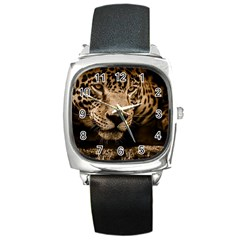 Jaguar Water Stalking Eyes Square Metal Watch
