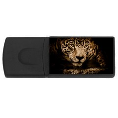 Jaguar Water Stalking Eyes Rectangular Usb Flash Drive