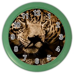Jaguar Water Stalking Eyes Color Wall Clocks by BangZart