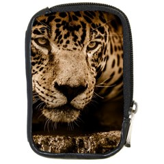 Jaguar Water Stalking Eyes Compact Camera Cases by BangZart