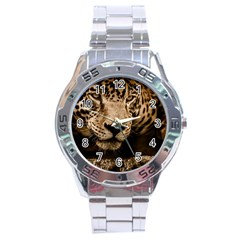 Jaguar Water Stalking Eyes Stainless Steel Analogue Watch
