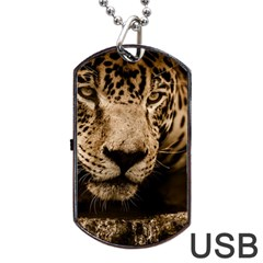 Jaguar Water Stalking Eyes Dog Tag Usb Flash (two Sides)